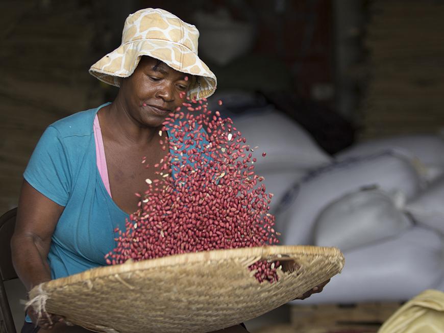 Taste of Haiti Haitian artisan